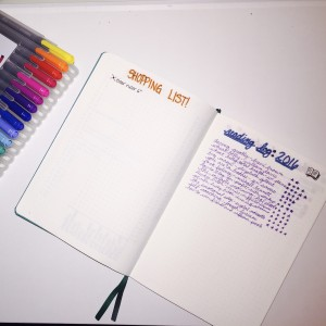 February Bullet Journal Wrap-Up | TheSkillfulDaughter