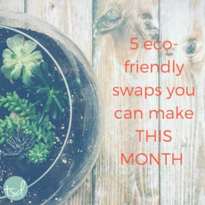 5 Eco-Friendly Swaps You Can Make THIS MONTH | TheSkillfulDaughter | www.theskillfuldaughter.com | Live a well-rounded life