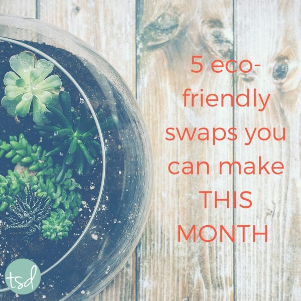 5 Eco-Friendly Swaps You Can Make THIS MONTH
